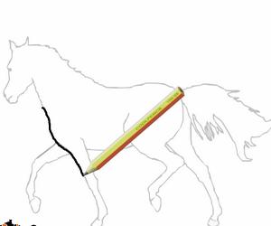 Jeux de chevaux - Dessin cheval de course ...